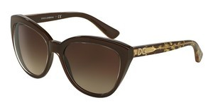 Dolce & Gabbana DG4250 291813 BROWN GRADIENTCRYSTAL ON BROWN