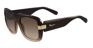 Salvatore Ferragamo SF779S 219 BROWN/NUDE GRADIENT